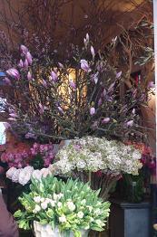 セッコの隣の花屋