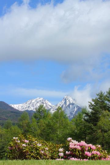 2011.05.24-八ヶ岳-15