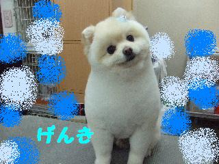 2008_02290032.jpg