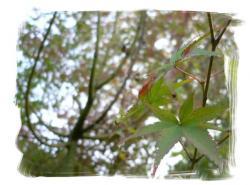 frame2137256.jpg