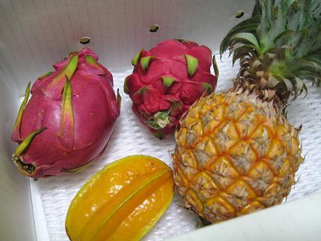沖縄フルーツ1