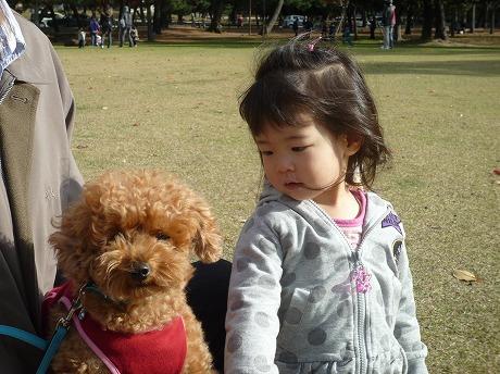 奈良公園12