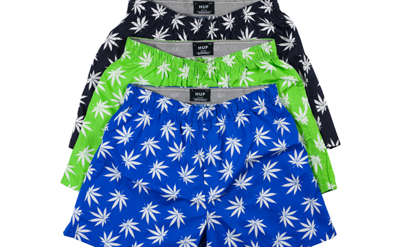 11huf_plantlife_boxer_group.jpg