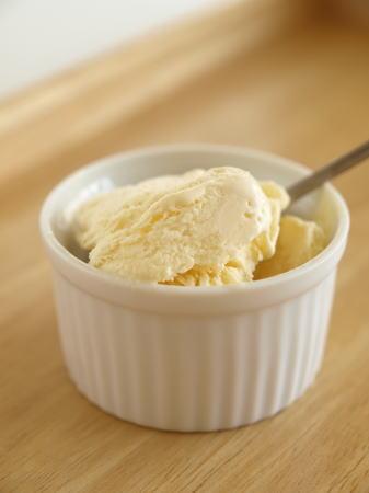 t簡単アイスクリーム14