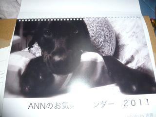 2011011504.jpg