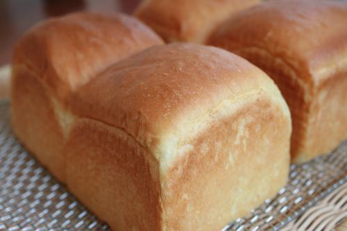 食パンいっぱい1