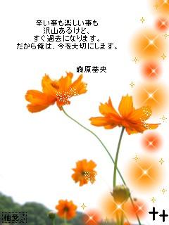 e0099047_1325199.jpg