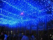 東京タワーでは6月1日より、大展望台1階の特設ステージ周辺に「天の川イルミネーション」を点灯する。写真は昨年開催時の様子。
