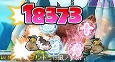 Maple091009_001951.jpg