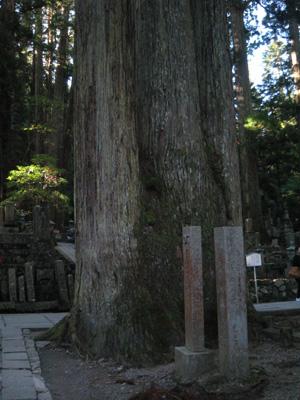 2009.10.12奥の院blog05