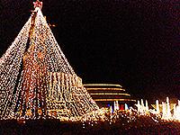 トロントロンイルミネーション2007