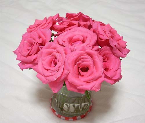 20090914薔薇