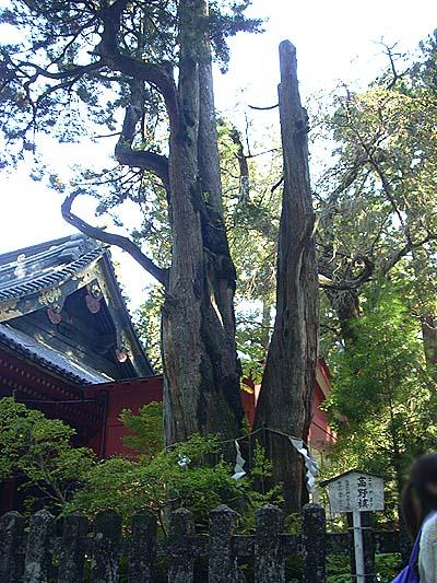 20090920二荒山神社⑨