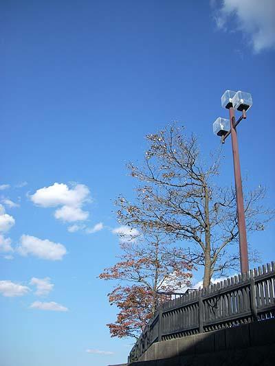 20091010秋の街灯と空