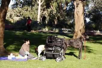 kingspark10.jpg