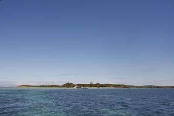 penguinisland10.jpg