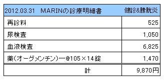 MARIN 2012.03.31診療明細書