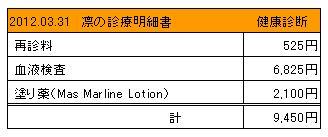 凛 2012.03.31診療明細書