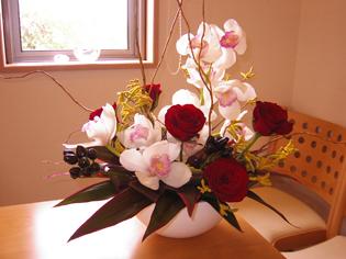 flower brog 46