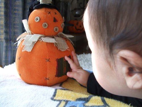 かぼちゃの日。