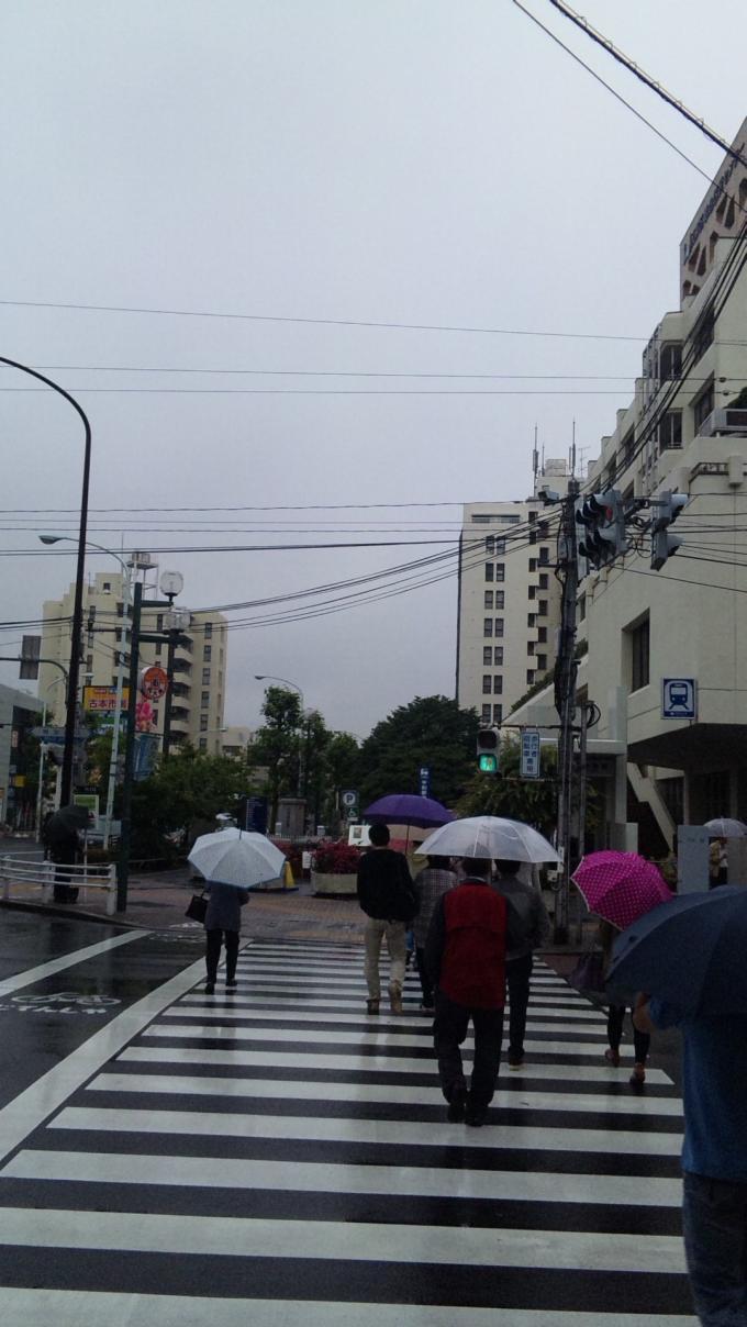 RAIN IN DOWN TOWN_20110528