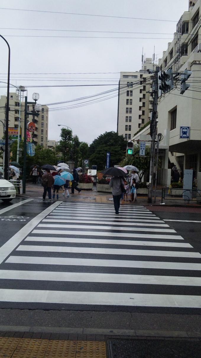 RAIN_20110529
