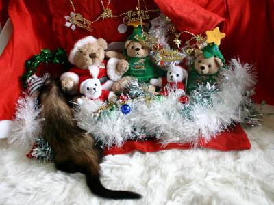 『サンタのクマさ~ん、後ろを通らせて~♪』