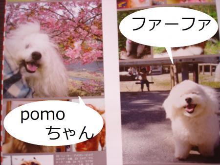 057髮題ェ契convert_20091017212913