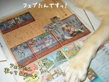 2007-10-22-7.jpg