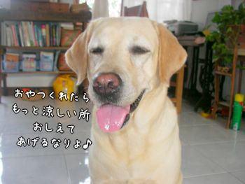 2007-10-31-8.jpg