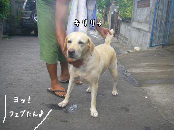 20071126-9.jpg