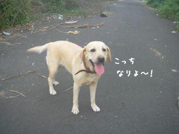 20071206-2.jpg