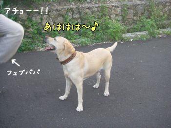 20071206-3.jpg