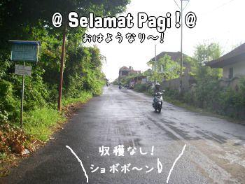 20071206-5.jpg