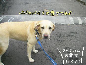 20071221_1.jpg