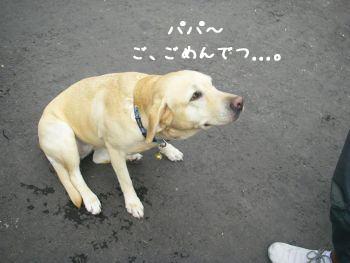 20071221_2.jpg