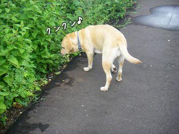 20071221_8.jpg