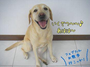 20071227-5.jpg