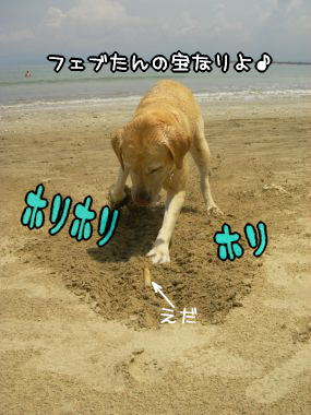 20080303_6.jpg