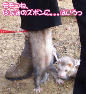 momoko1109-2.jpg