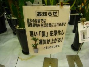 20090930_7.jpg