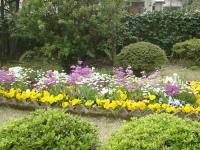 2007/春