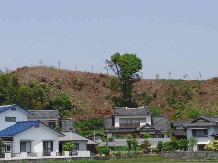 木村保之次さん提供の山林