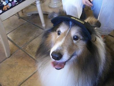 2010.4.1帽子もかわいいね
