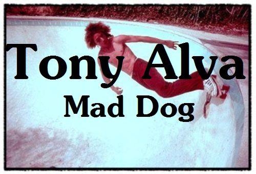tony_alva_doglogo 500x341