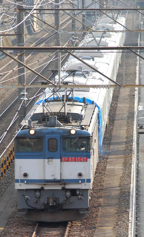 DSC_8666.jpg