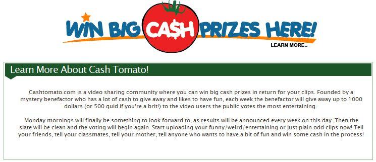 FireShot capture #2 - CashTomato_com - www_cashtomato_com_learnmore_php