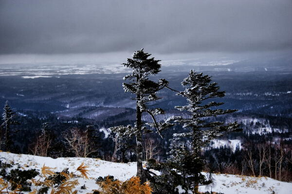 藻琴山冬景色