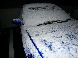 雪だぁ~(TロT)
