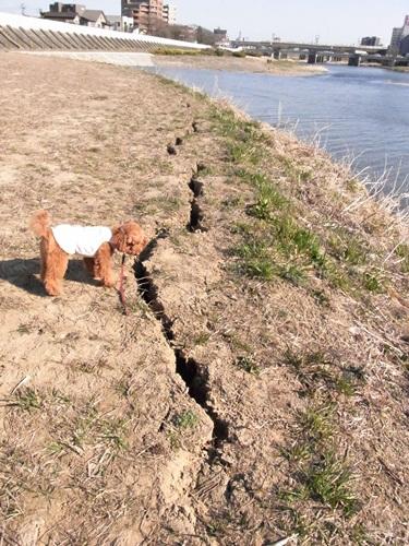 3・11地震・6